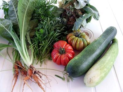 hortalizas-huerto-pixabay