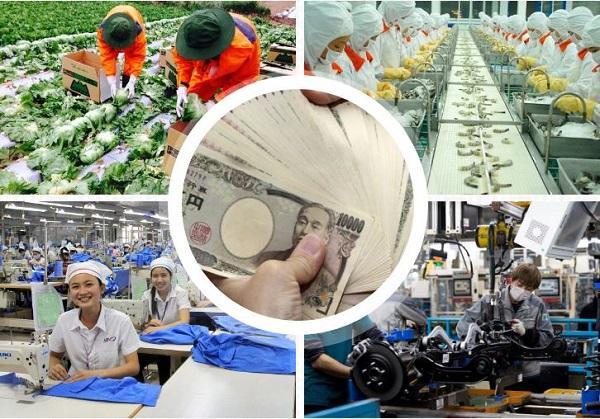 Mức lương cơ bản và lương thực lĩnh khi tham gia XKLĐ Nhật Bản