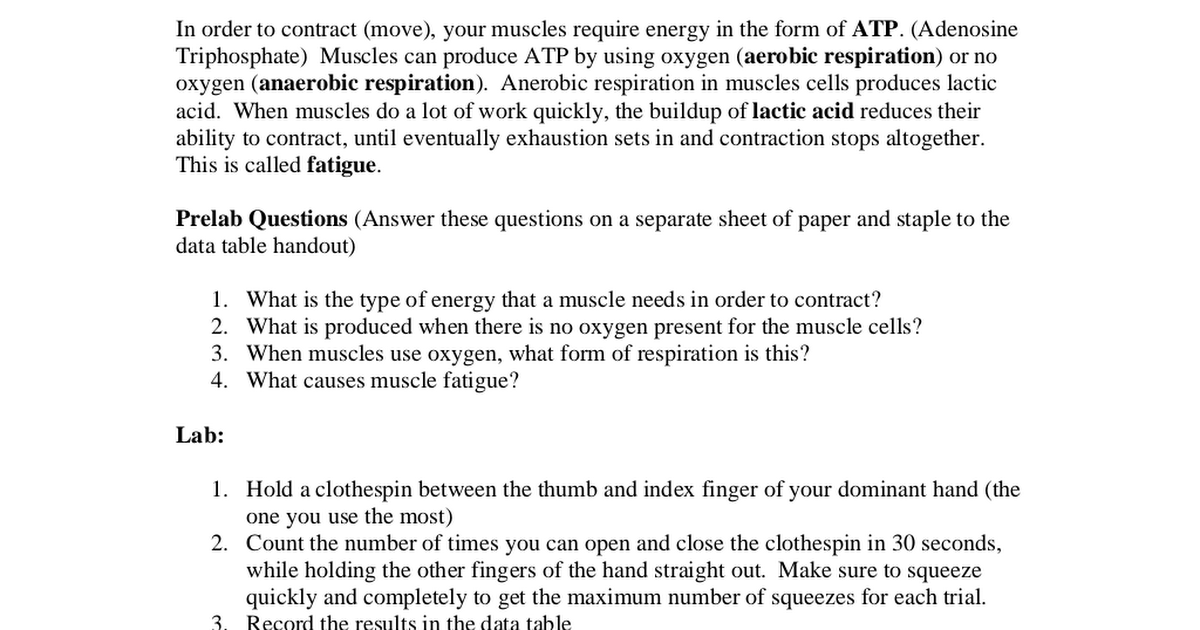 Clothespin and Muscle Fatigue lab pdf - Google Drive