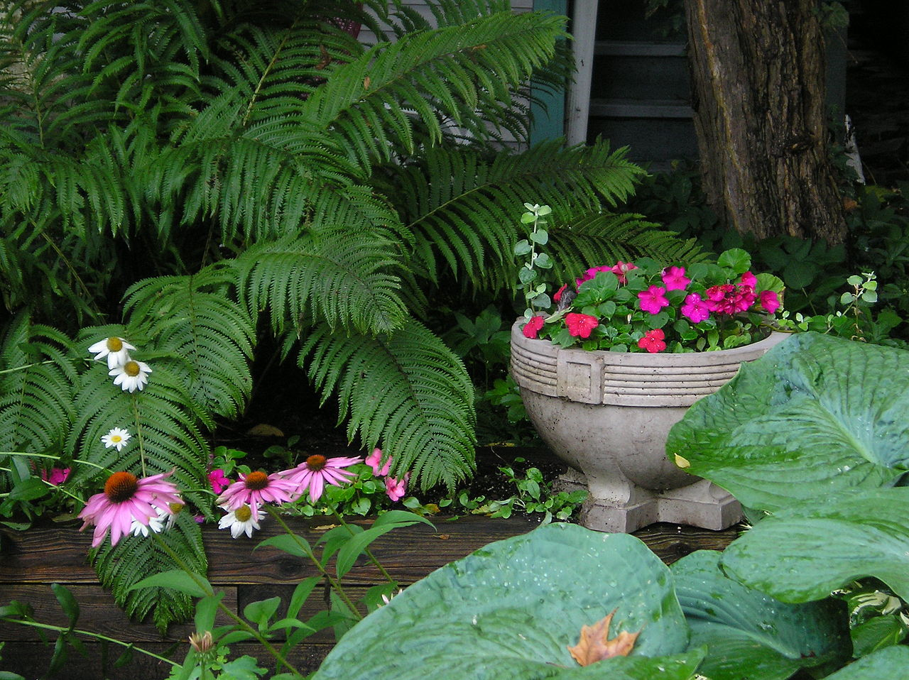 1280px-Shade_garden,_Chautauqua.jpg