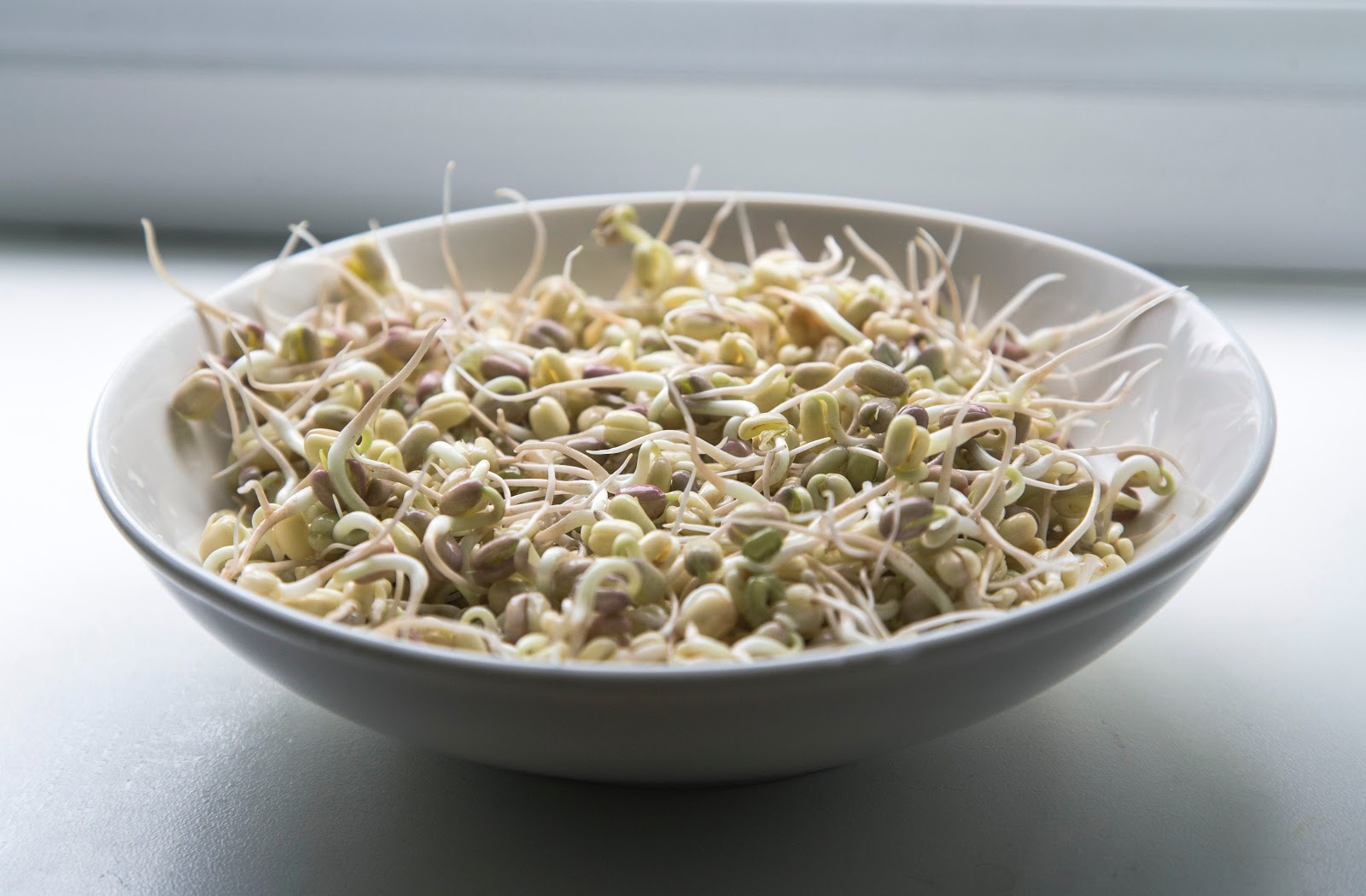 sprouts, which are an example of high-vibrations foods, in a bowl