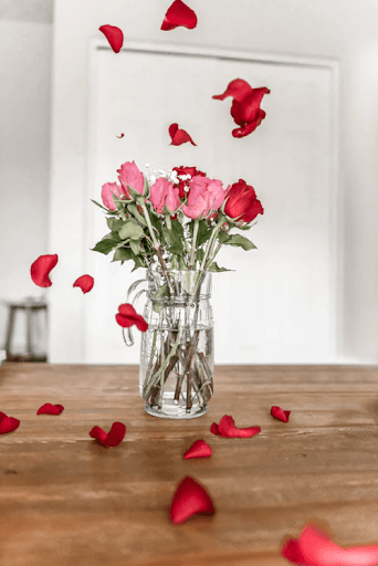 Pink and red roses in vase