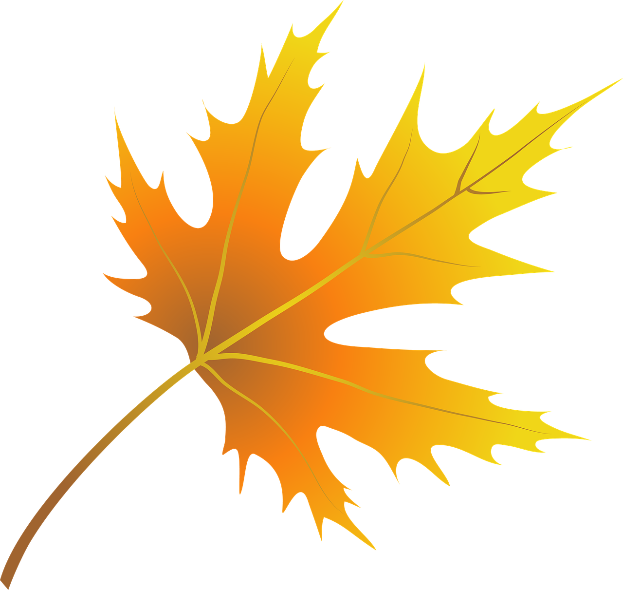 Opis: Autumn Leaves Skeleton Leaf - Free image on Pixabay