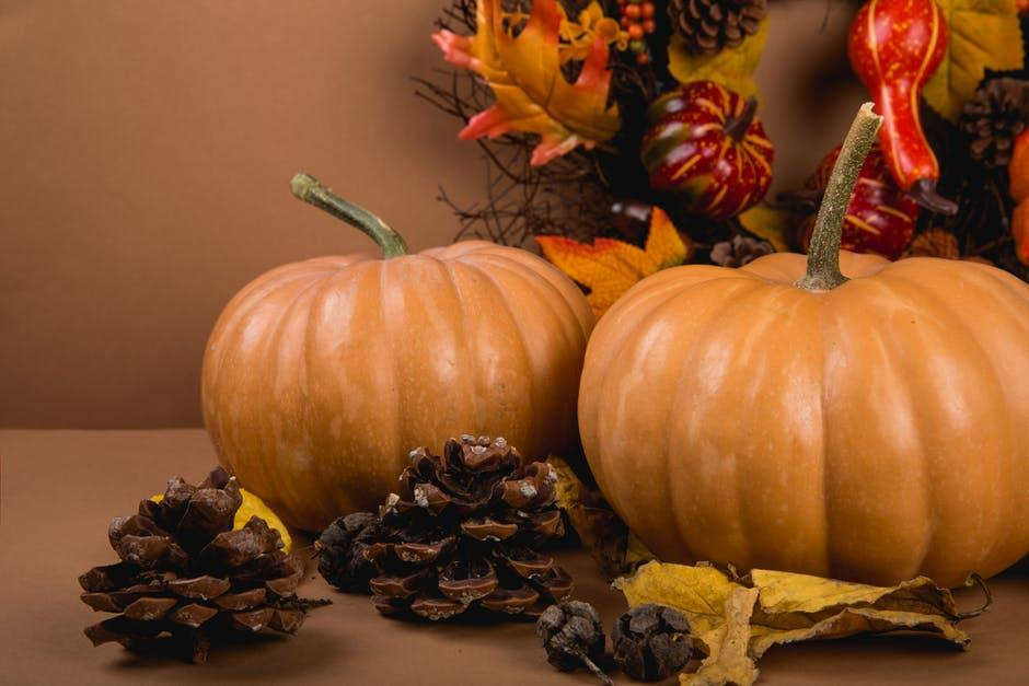 pumpkins with pine cones and autumn leaves