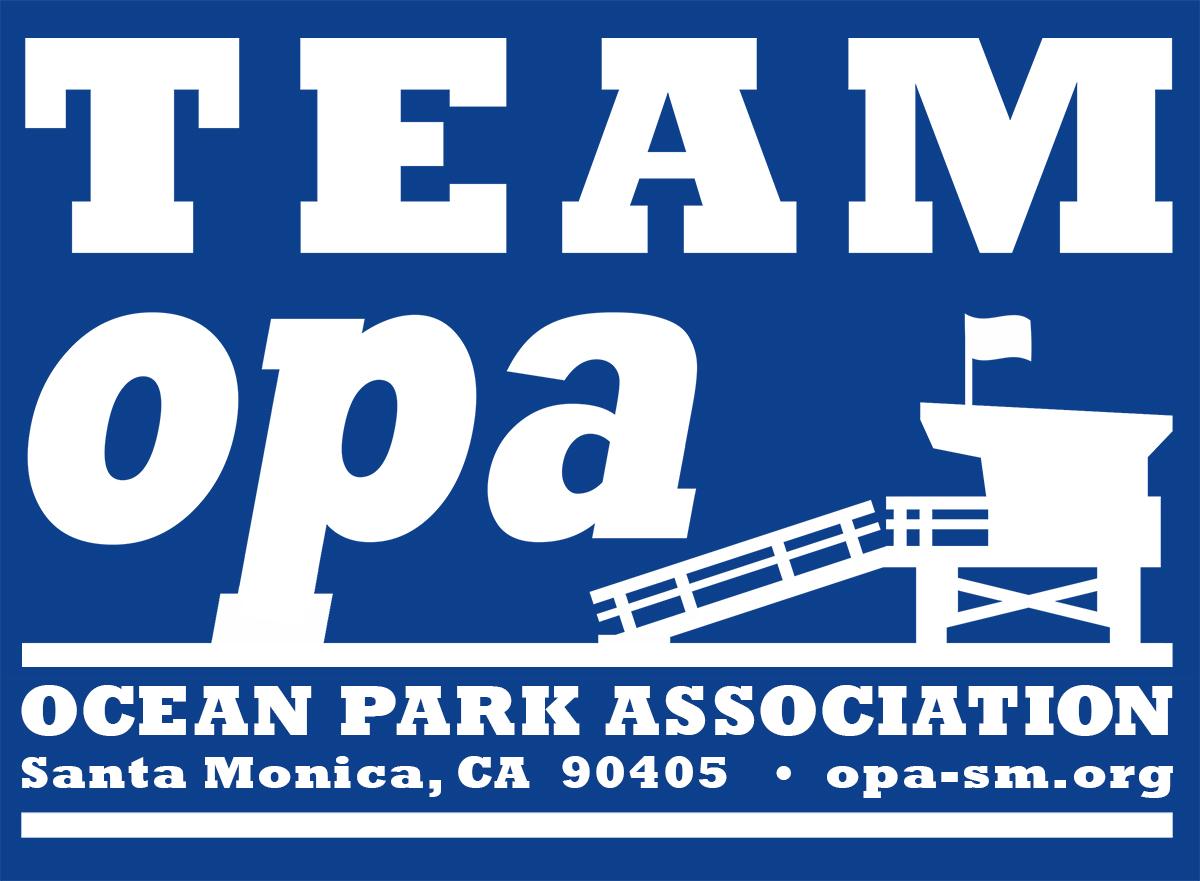 team-opa-Tshirt-art6-med.jpg