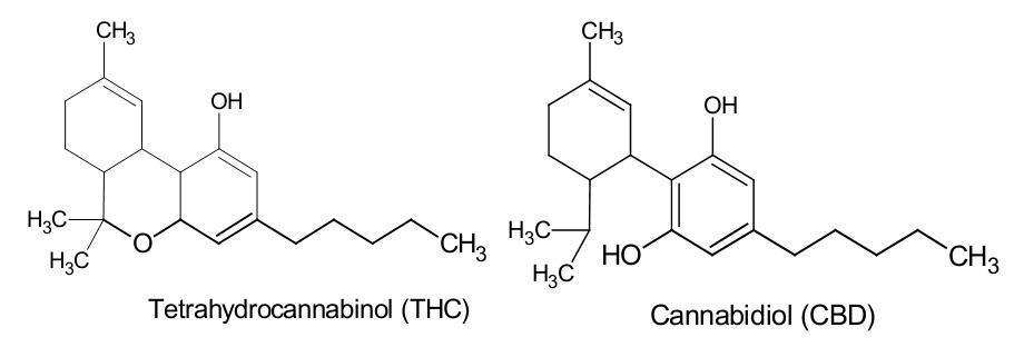 THC & CBD?