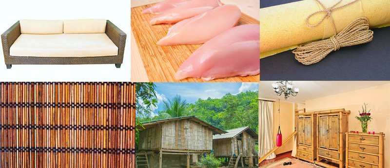 Bamboo's Versatility
