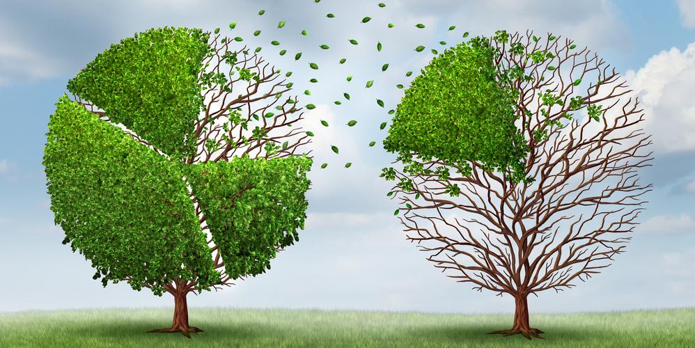Sharing Tree.jpg
