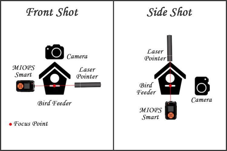 How to Take Bird Photos with Laser Trigger Setup