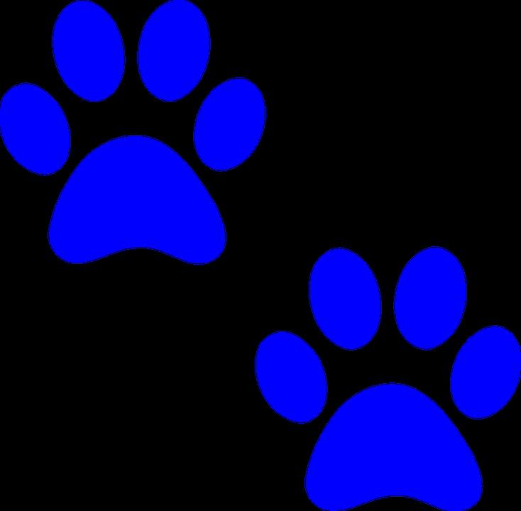 Paw, Print - Free images on Pixabay