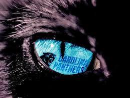 Carolina Panthers.jpg