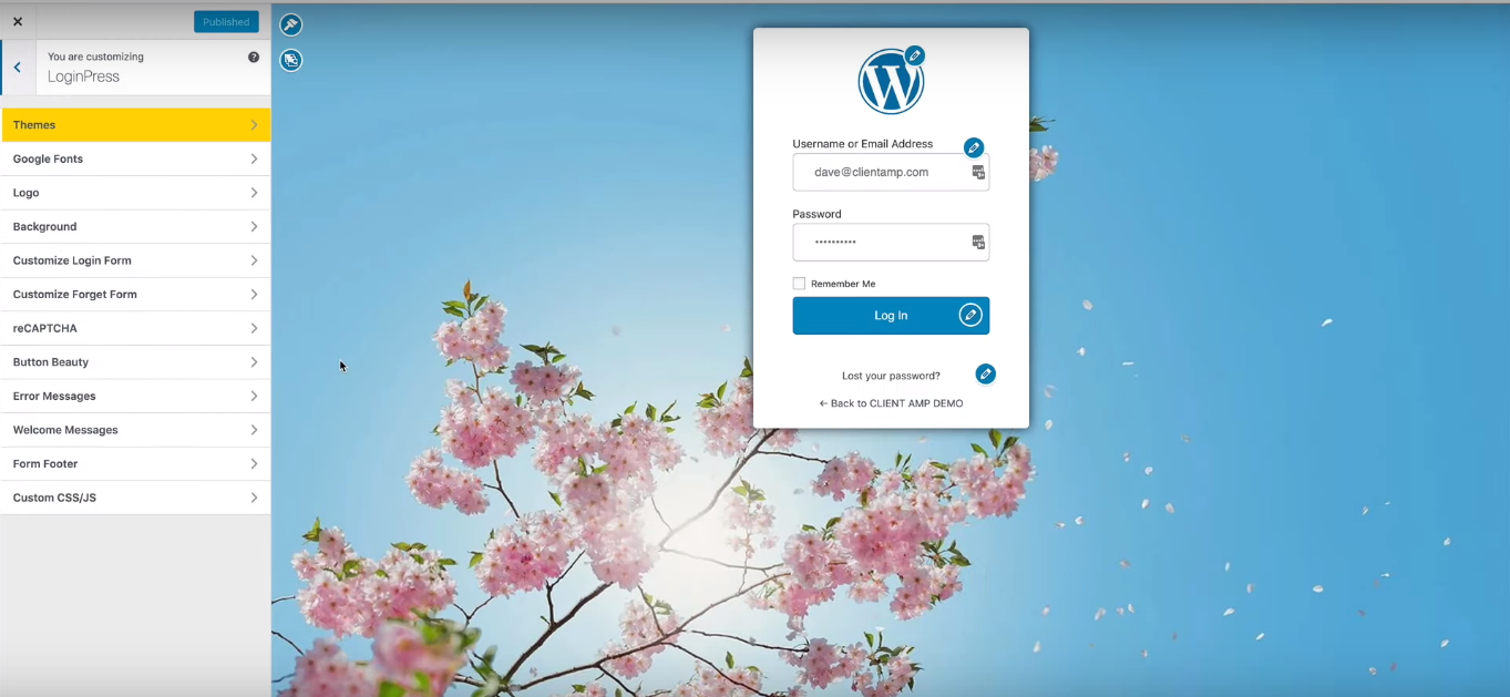 LoginPress WordPress Customizer