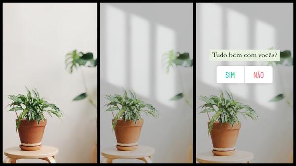 """foto de vasos de plantas com os dizeres """"Tudo bem com vocês?"""" e a enquete """"Sim e não"""""""