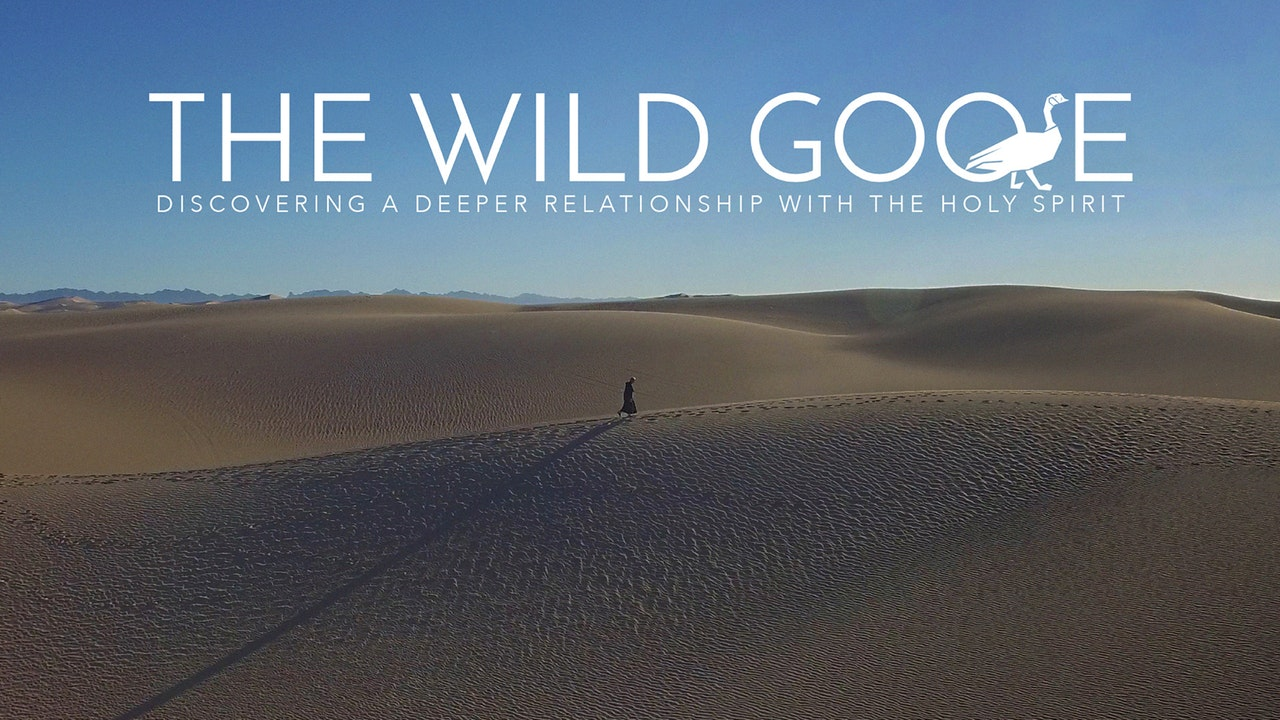 The Wild Goose with Fr. Dave Pivonka