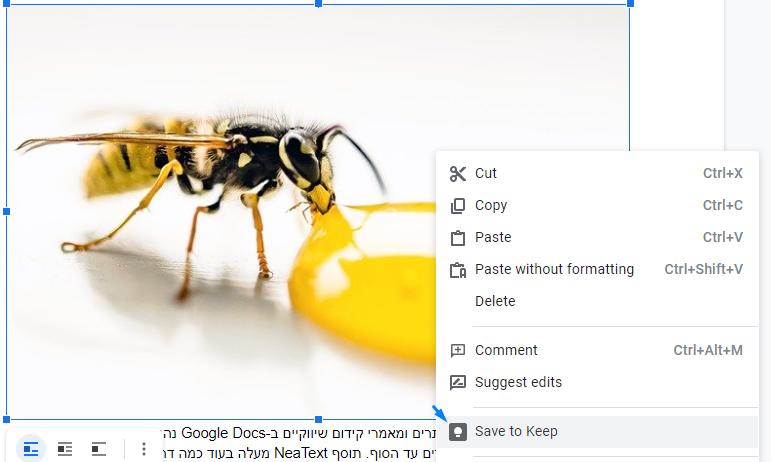 העתקת תמונות ממסמך גוגל דוקס לוורדפרס