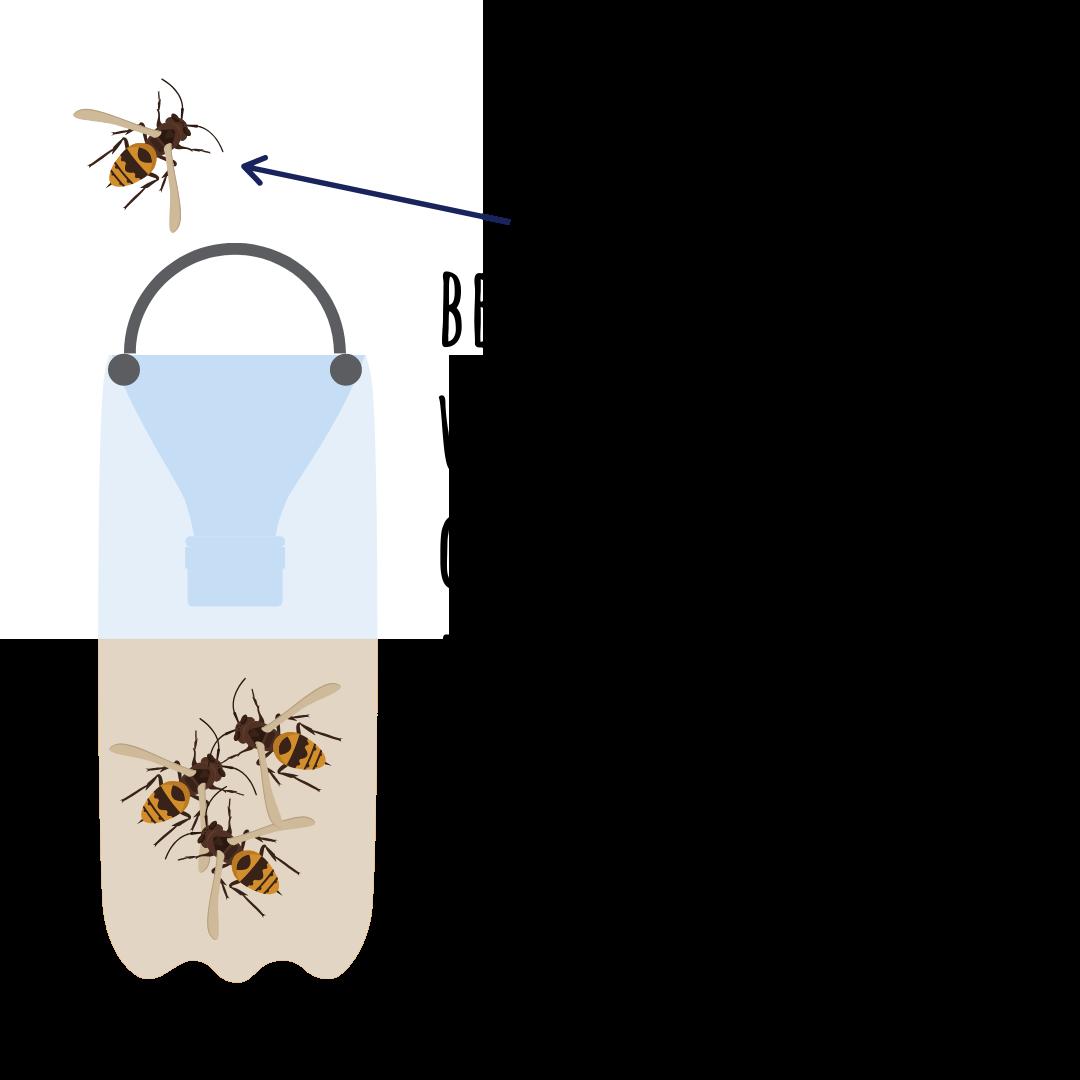diy wasp trap instructions step 5