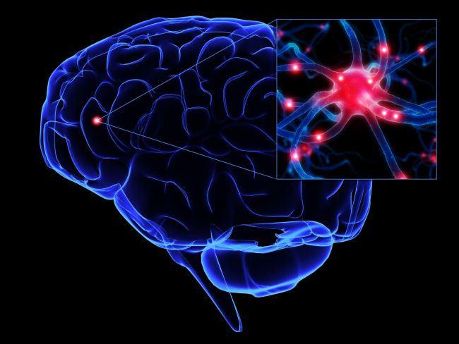 Ngộ độc thực phẩm có thể dẫn đến tình trạng viêm màng não