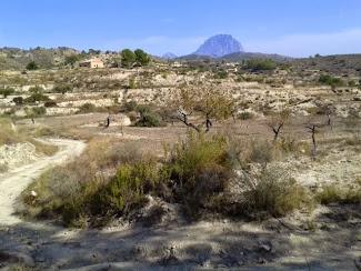 zicht op de Puig Campana