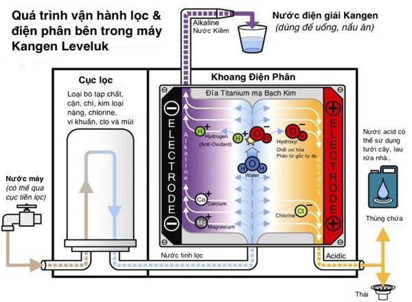 Cấu tạo máy và nguyên lý lọc của máy lọc nước Kangen tiên tiến bậc nhất