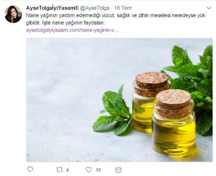 ayşetolga.png