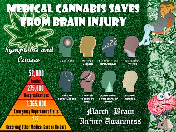 Marijuana and Brain Injury