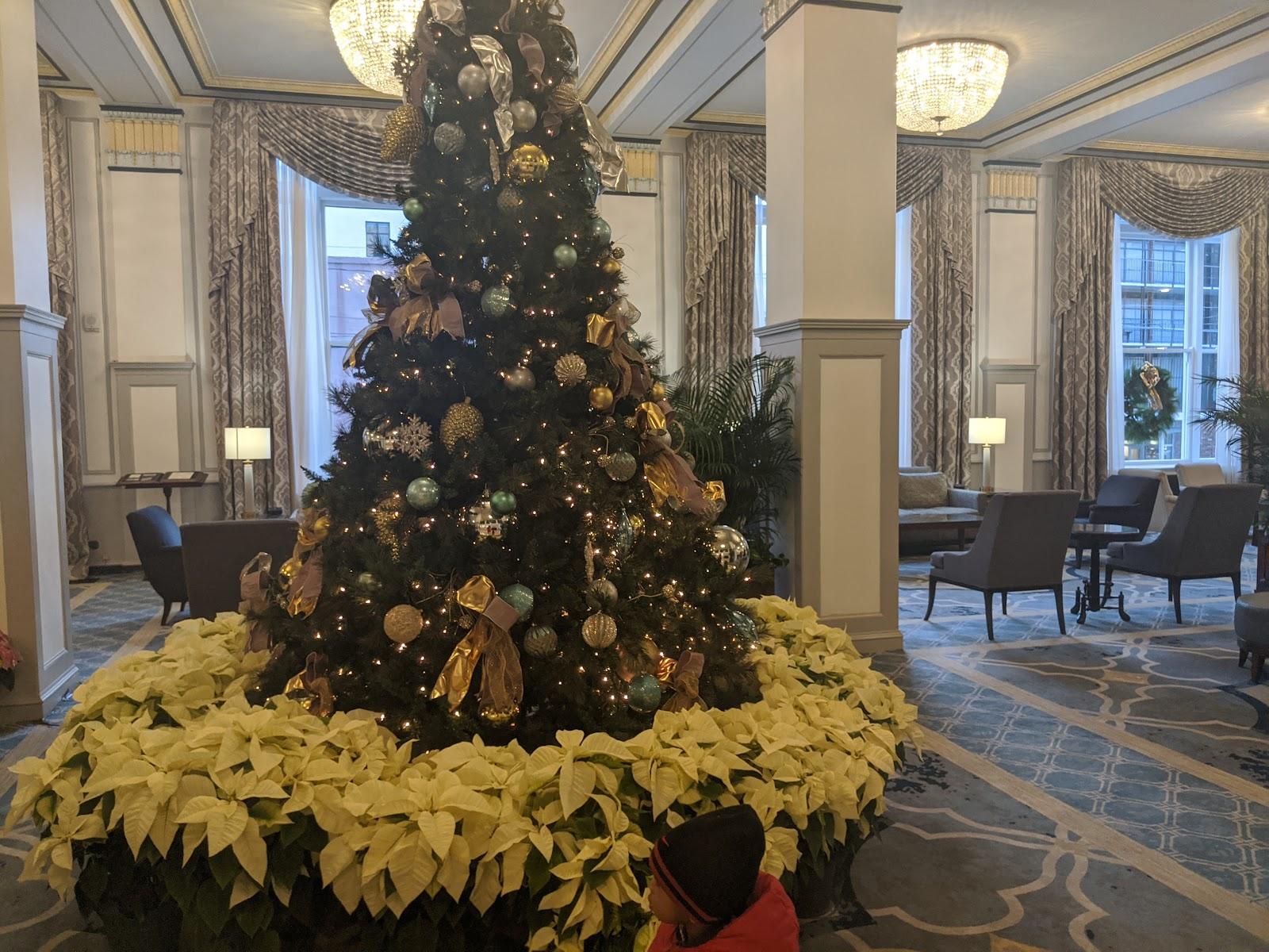 LS8zsAFp0THk1cF3Yn3XIFXYa0W7L_Vrz8h2xSJsdbcFTG3sfzB84qxz8_fXWvMrwki-9UkFUetgUBHz035PP5-Bgjhhm52PWtqu8vv4bg1DQ4WohvwmYy7vuj2RWhtTf1BVujeb Classic Holiday Style and Family Fun in Charleston, SC