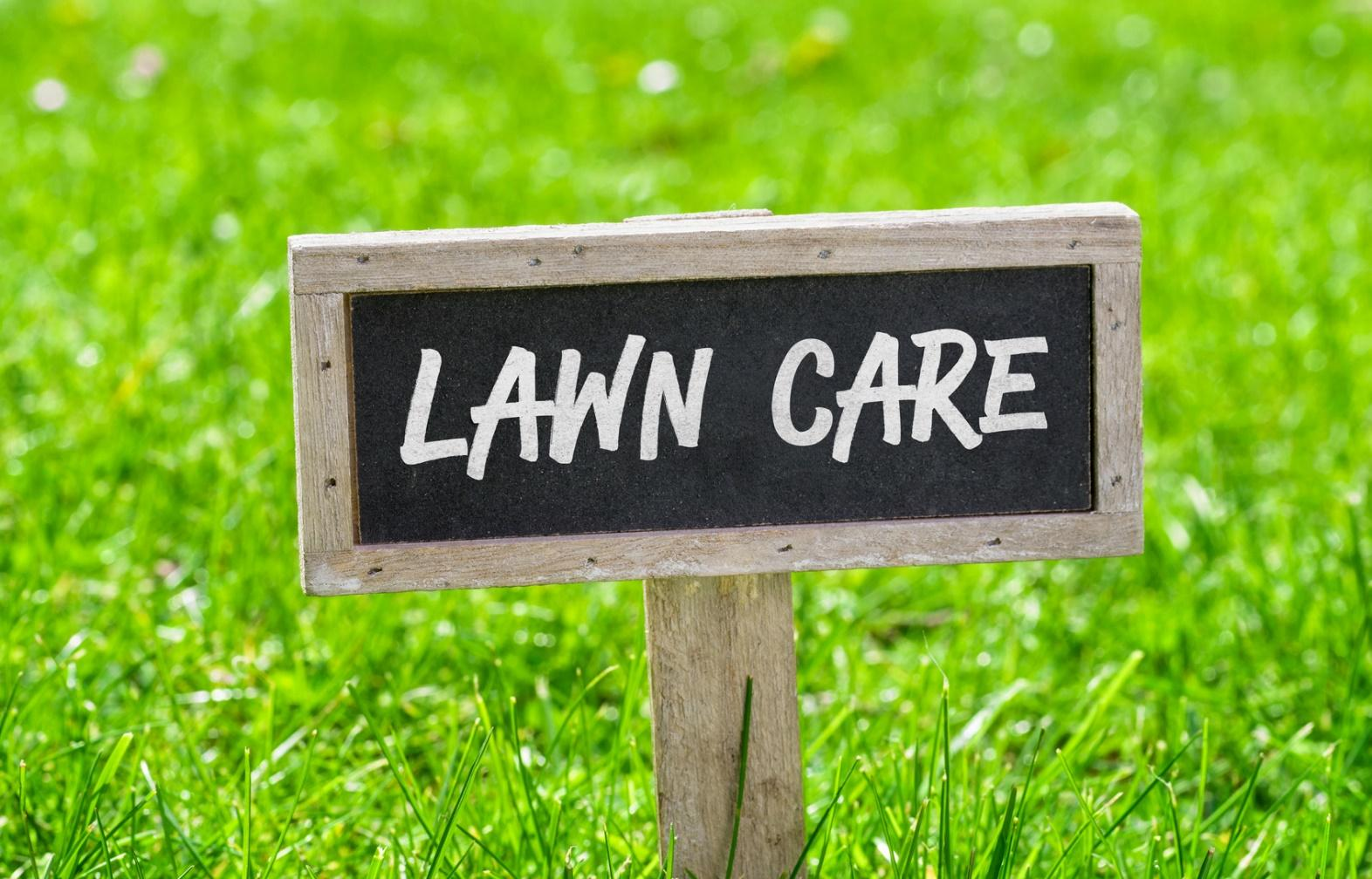 Four Tips for Choosing the Right Lawn Care Provider in Virginia Beach