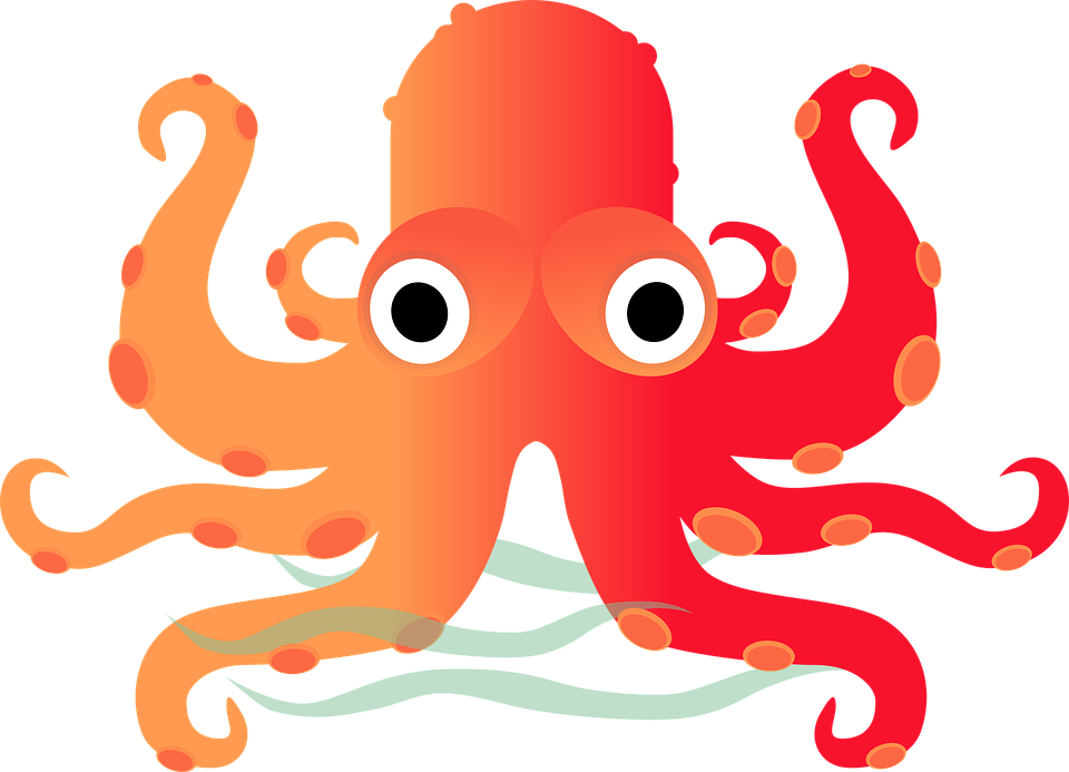 Octopus - Free pictures on Pixabay