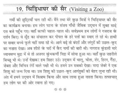 Essay on school picnic to zoo