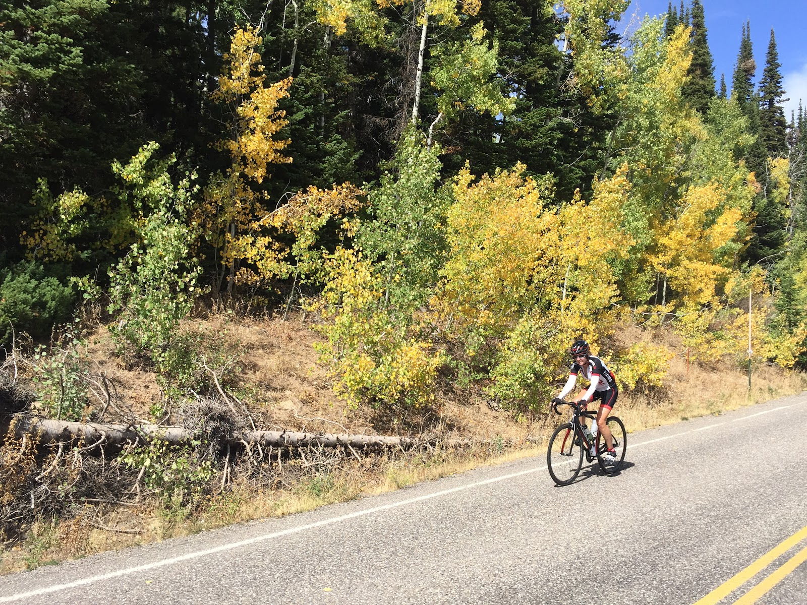Climbing Mt. Harrison by bike - Stacy Topping cycling up to the road