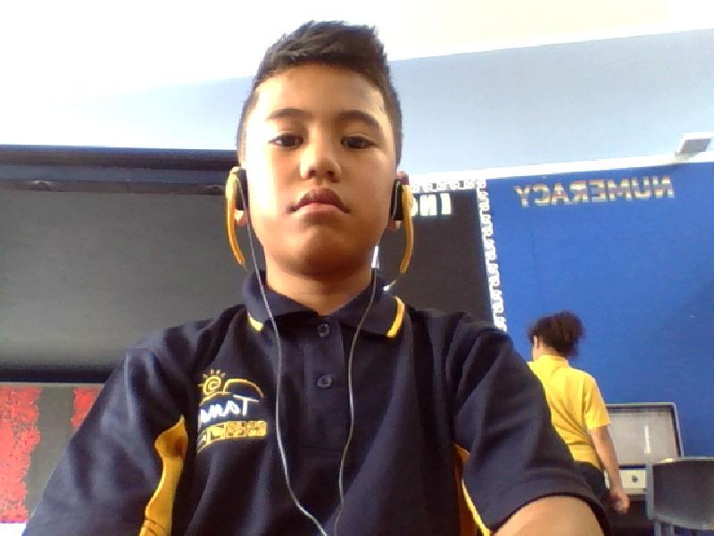 webcam-toy-photo1.jpg