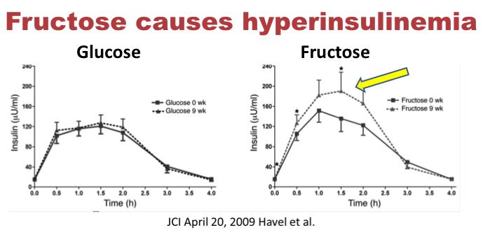 الآثار القاتلة للفركتوز - ج2 4