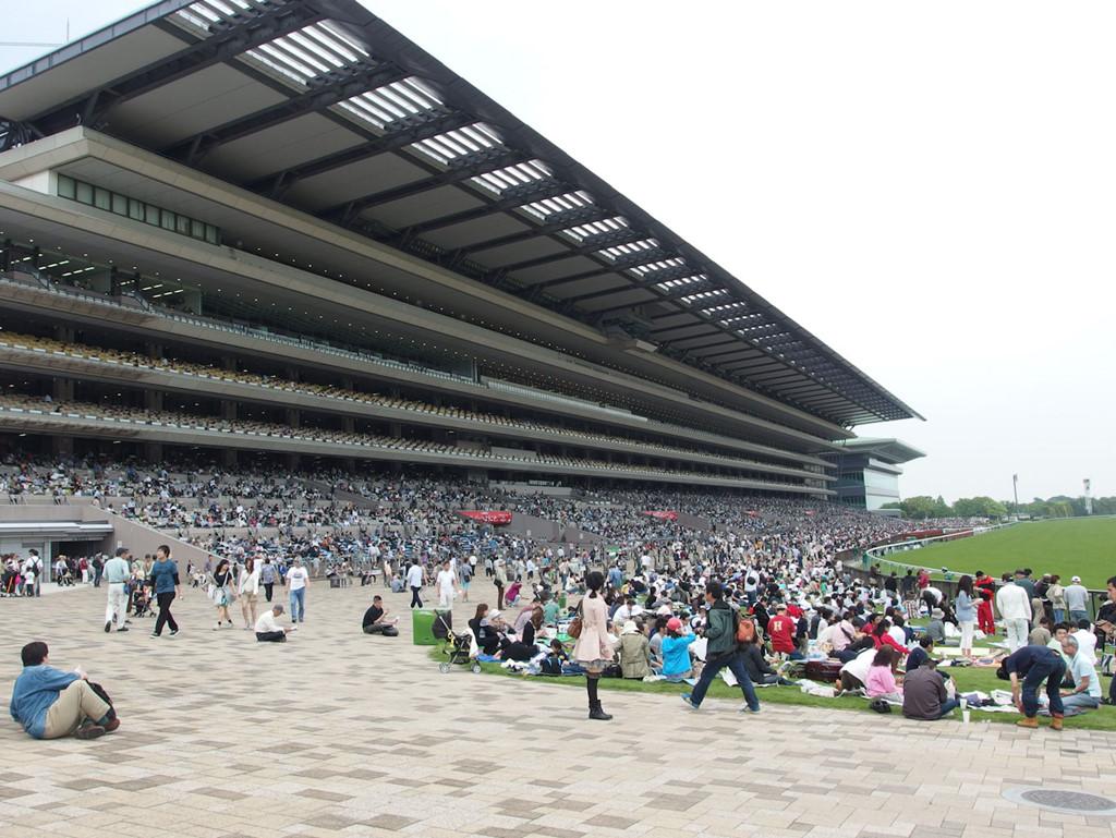 Tokyo Racecourse (Japan)