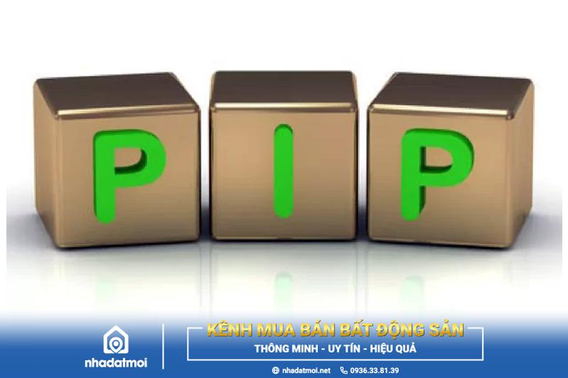 pip là gì