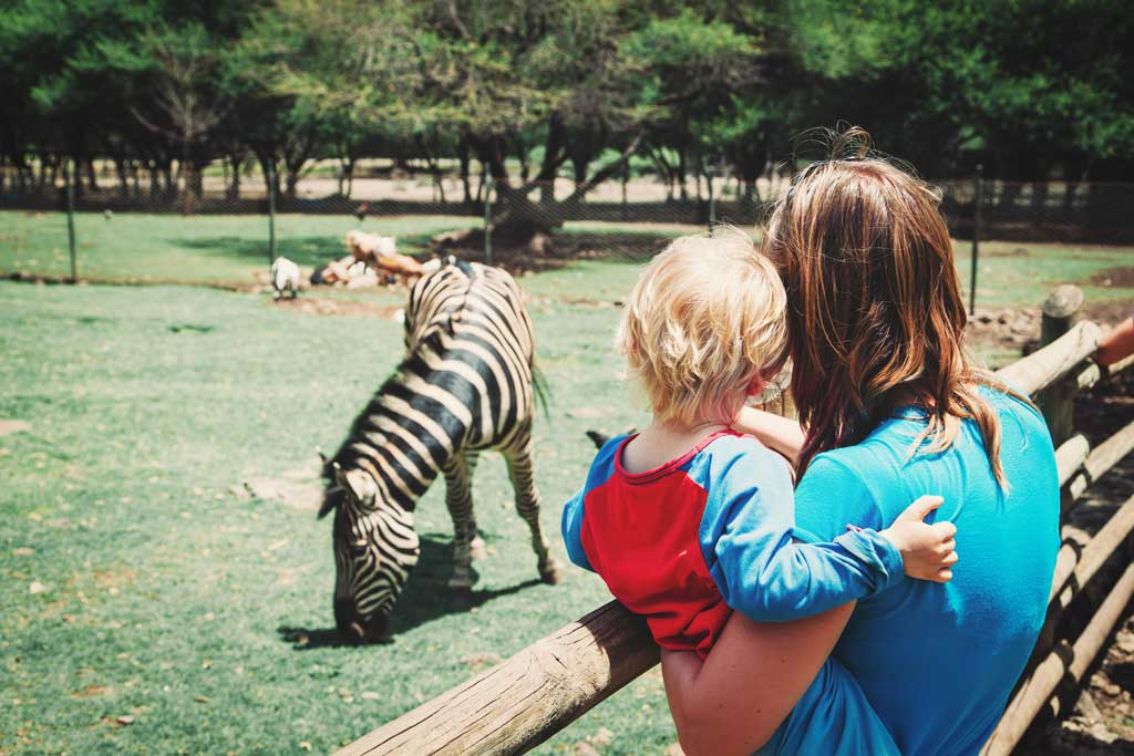 31 Scary Situations in Zoos