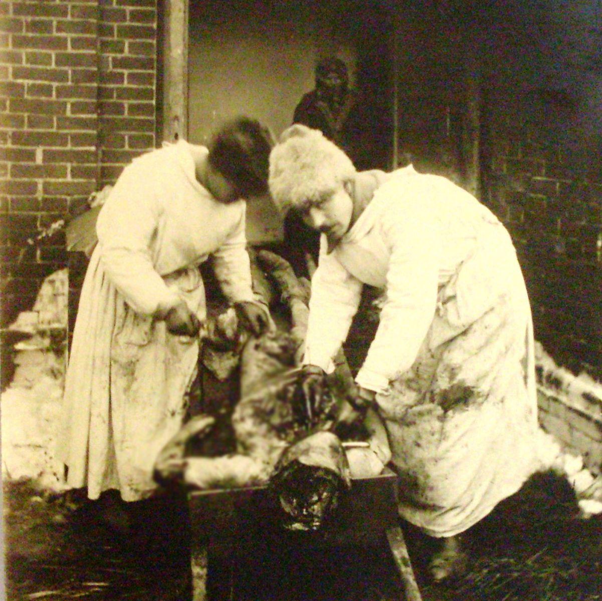 Експерти у Змійові оглядають трупи денікінських жертв. 1 січня 1920 року