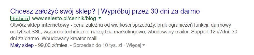 Jak wygląda meta description w reklamie Google