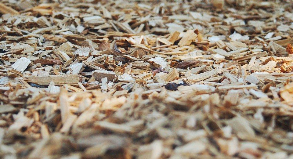 Bark, Chips, Wood, Park, Mulch, Nature, Tree, Texture