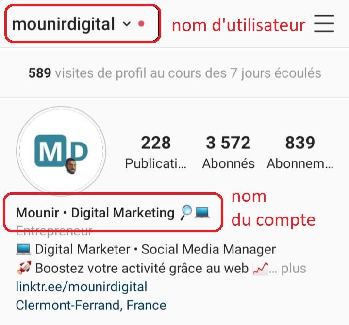 Mounir Digital - Comment rédiger une biographie Instagram attractive - Nom d'utilisateur