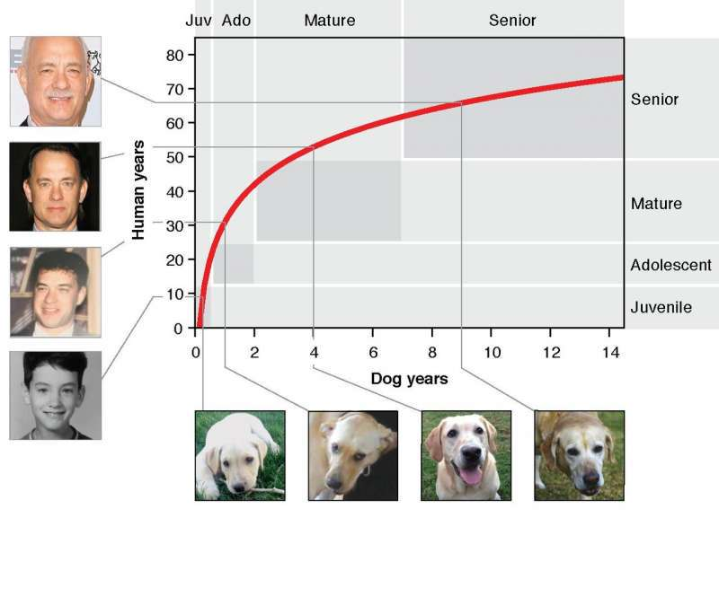 Ile lat ma pies - UC San Diego