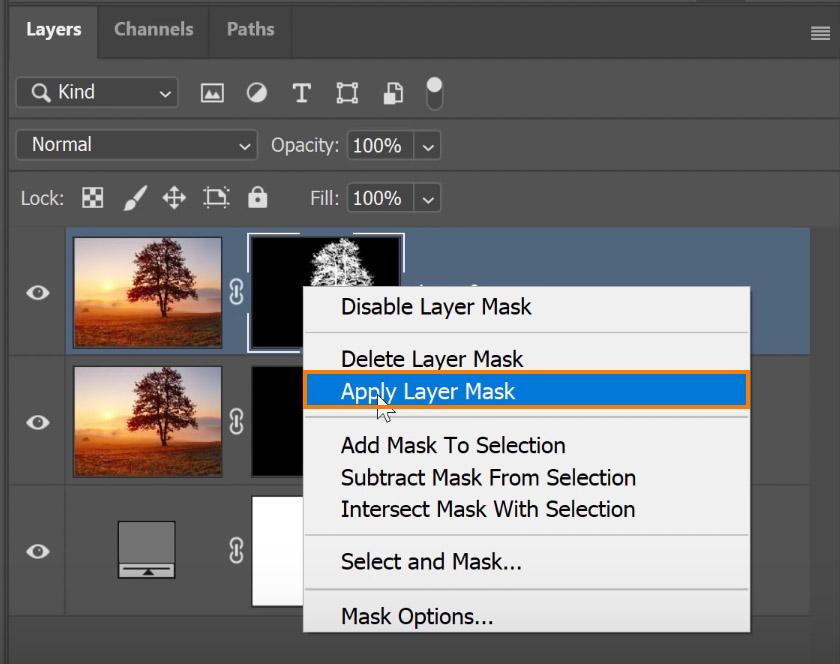 Select Apply Layer Mask
