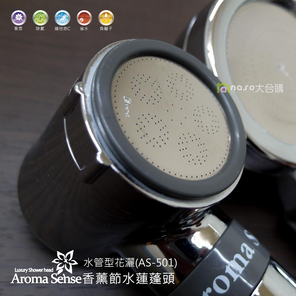 Aroma Sense 香薰節水蓮蓬頭 水管型花灑(AS-501)