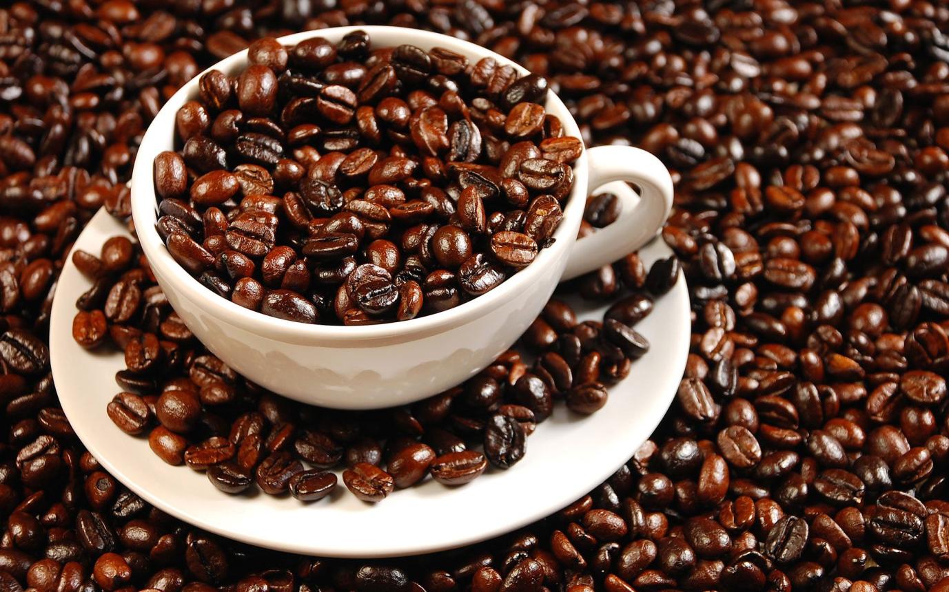 Cà phê nguyên chất là gì đang là câu hỏi chung của nhiều bạn trẻ thời hiện đại