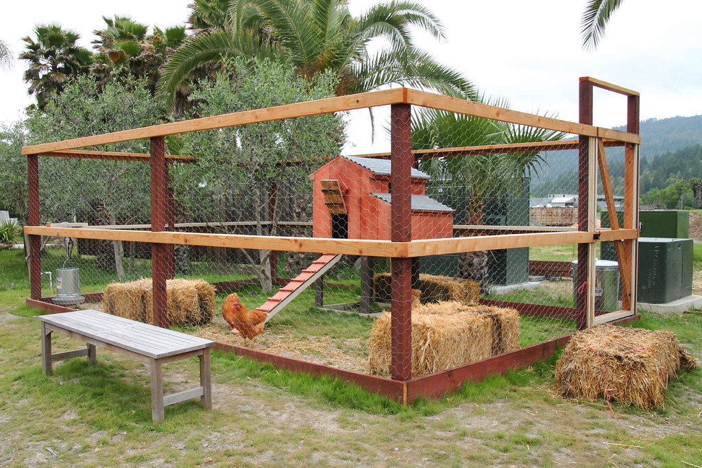 Simple Chicken Coop Designs With Terrific Predator Protection Chicken Yard,Arts And Crafts Design Furniture