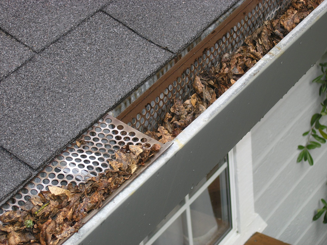 gutter with gutter guard