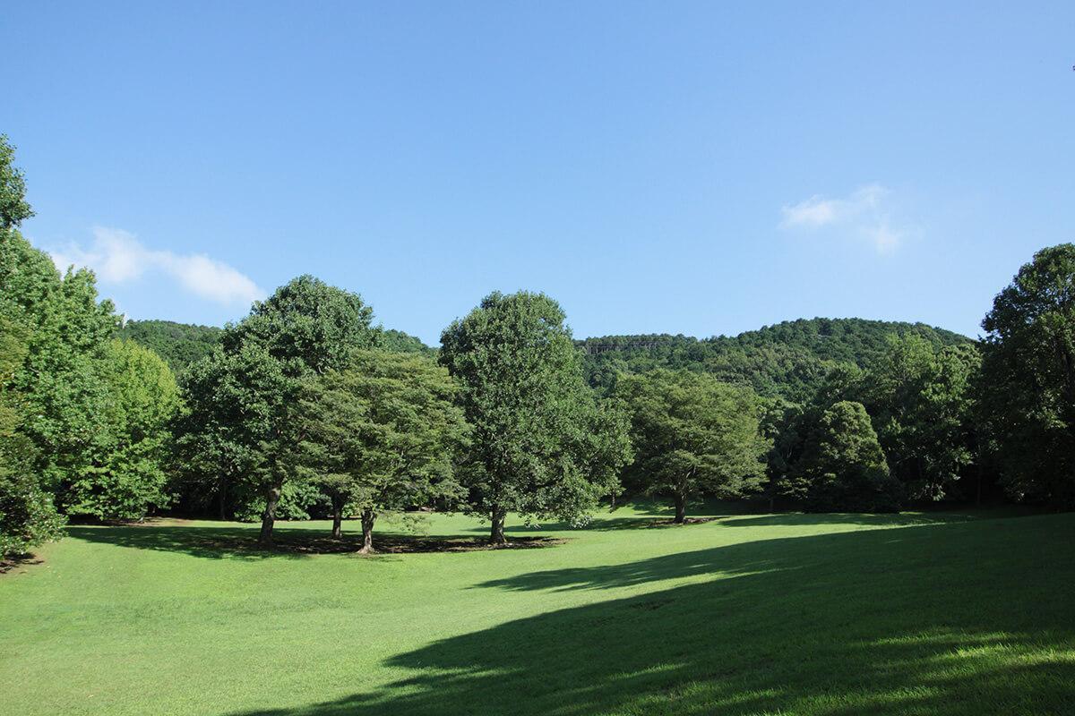 静岡県沼津市の愛鷹運動公園。INN THE PARKの前には広大な芝生広場が広がる。公園全体の広さは代々木公園とほぼ同じ大きさの60ヘクタール!