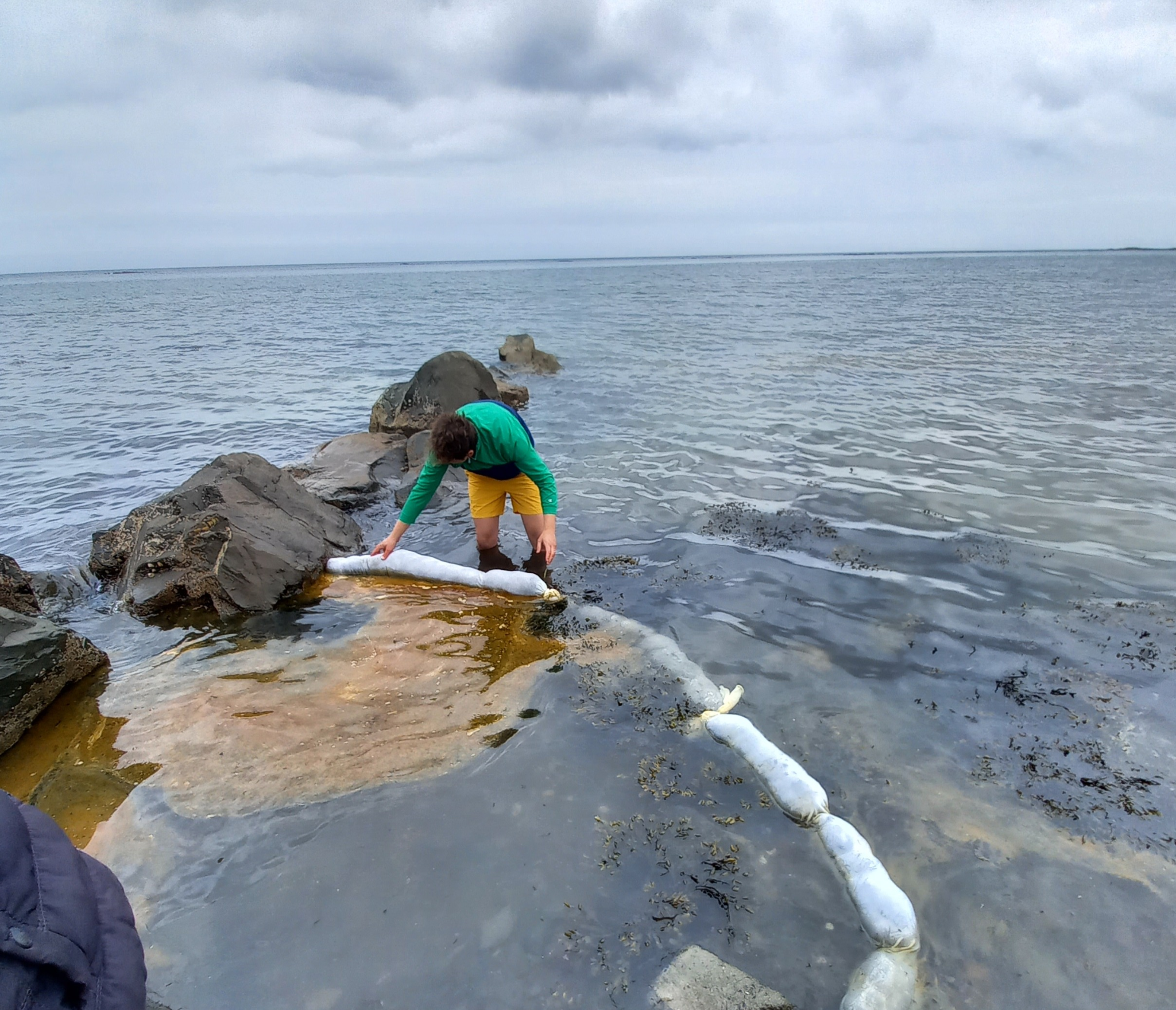 Green Salon Collective using their innovative hair booms to remove oil from tide pools.