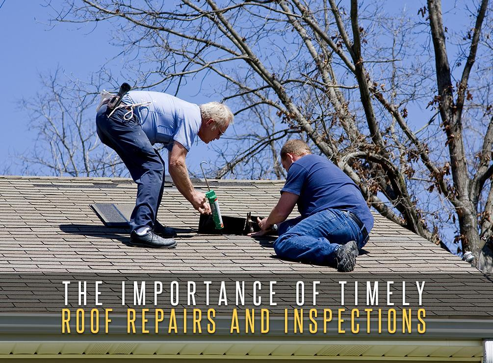 Roof Repairs and Inspections