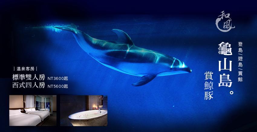 dolphin-礁溪 (1)
