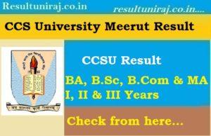 CCS University Result 2018